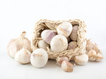 Garlic on White. Still life of garlic of various sizes and some cloves and a pale yellow weaved rectangular basket Stock Images
