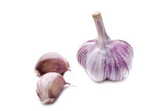 Garlic on a white background. Fresh garlic on a white background closeup Stock Image