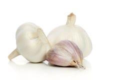 Garlic on a white background Stock Photos