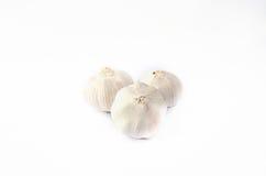Garlic. On the white background Royalty Free Stock Photos
