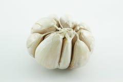 Garlic on white background Royalty Free Stock Photography