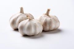 Garlic on white background Royalty Free Stock Image