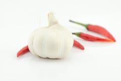 Garlic on white background Stock Images