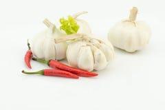 Garlic on white background Royalty Free Stock Images