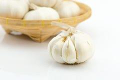 Garlic on white background Stock Image