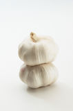 Garlic white background. Garlic isolated on white background Stock Photo