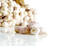 Garlic in a white background. Garlic in a white background, Used as a cooking ingredient Stock Photos