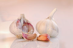 Garlic on a white and pinkish base Stock Photos
