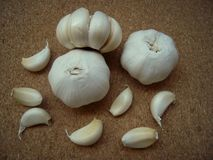 Garlic whole and cloves of garlic on the cork surface. Royalty Free Stock Images