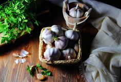 Garlic in a wicker basket with parsley Stock Image
