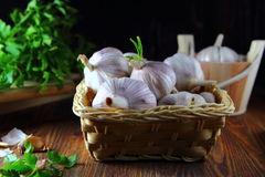 Garlic in a wicker basket with parsley Royalty Free Stock Images