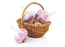 Garlic in a wicker basket Stock Image