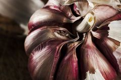 Garlic on wooden cutting table frame and dark background royalty free stock image