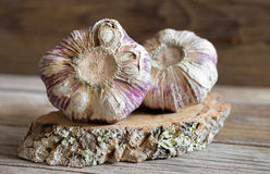 Garlic on wood Stock Image