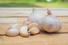 Garlic. Wood green food eat Royalty Free Stock Image