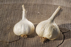 Garlic. On a wooden board Stock Image