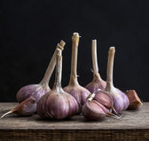 Garlic. On a wooden board. still life Royalty Free Stock Images