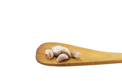 Garlic on wooden spoon Stock Images