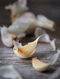 Garlic on a wooden surface. Dried garlic on a wooden surface Stock Image