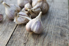 Garlic on the wooden table. Organic garlic on the wooden table Stock Photo
