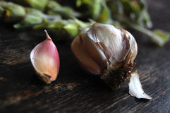 Garlic on wooden table. Vegetables and tea stock photo