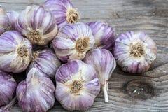 Garlic on wooden vintage background. stock image