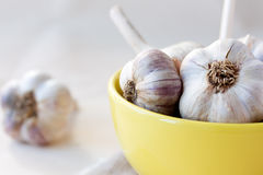 Garlic in yellow bowl on the table. Garlic in yellow ceramic bowl on the table on sackcloth napkin Stock Image