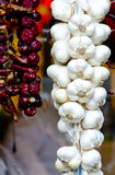 Garlicj-Zopf und Ungar getrockneter Paprika Stockfotografie