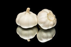 Garlick Foto de archivo