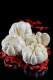 Garlick och den wild ron kärnar ur Arkivfoton
