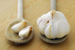 garlics匙子 库存照片