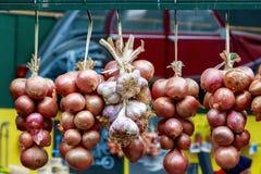 Garlics και κρεμμύδια στην επίδειξη στην αγορά δήμων Στοκ εικόνες με δικαίωμα ελεύθερης χρήσης
