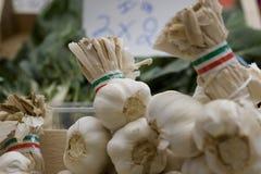 garlics στοκ φωτογραφίες