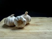 garlics fotografia royalty free