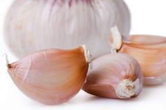 Garlics Royalty Free Stock Photography