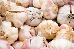Garlics. Picture of some garlics in a market Royalty Free Stock Images