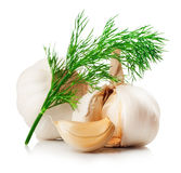 garlics стоковые изображения