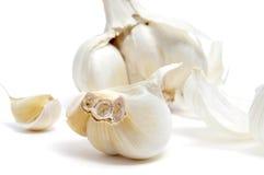 Garlics Stock Photo