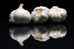 garlics 3 Стоковое Фото