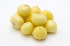 Garlics Zdjęcia Stock