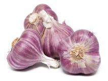 garlics Stockfotos