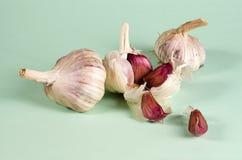 garlics Стоковое Изображение RF