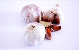 garlics Immagine Stock