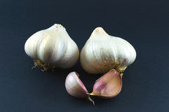 garlics Στοκ φωτογραφίες με δικαίωμα ελεύθερης χρήσης