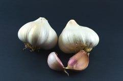 garlics Photos libres de droits