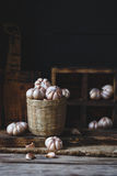 garlics Lizenzfreie Stockfotografie