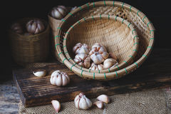 garlics Stockbild
