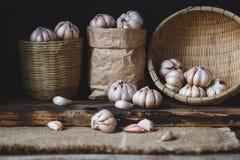 garlics Lizenzfreie Stockbilder