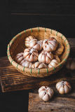 garlics Stockbilder