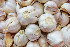 garlics foto de stock royalty free